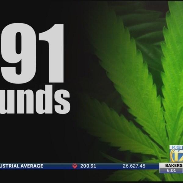 Kern_Corruption__Tracking_the_marijuana_0_20181005013202