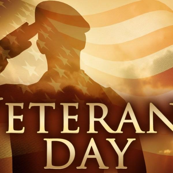 veterans day_1447118907218.jpg