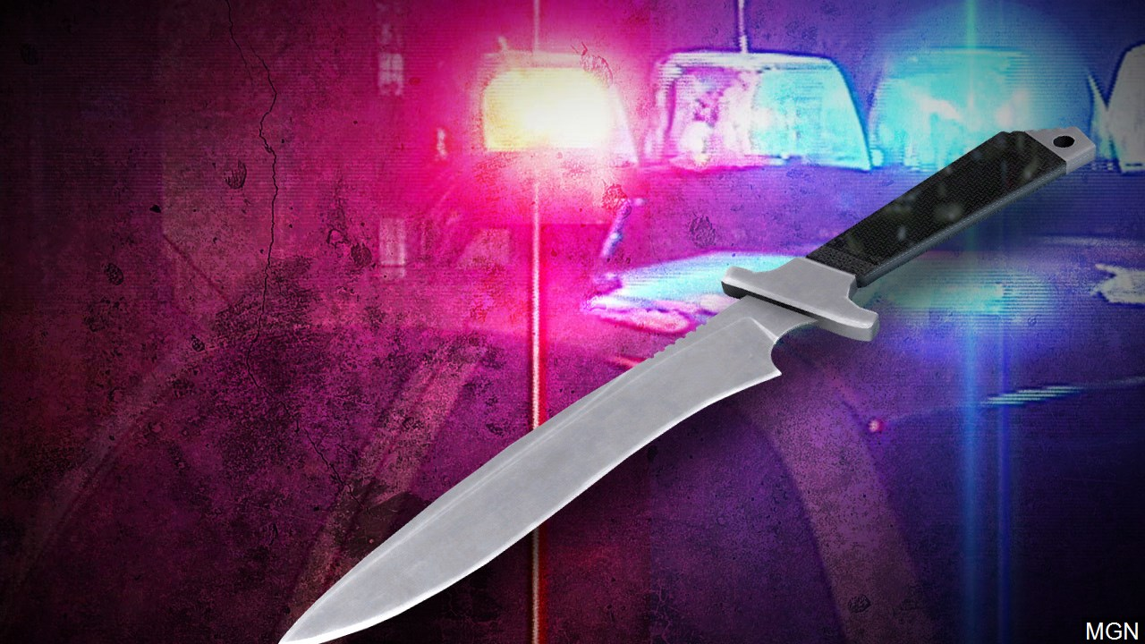 deadly stabbing_1553193710483.jpg.jpg