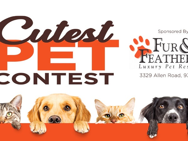 2019 Cutest Pet Contest