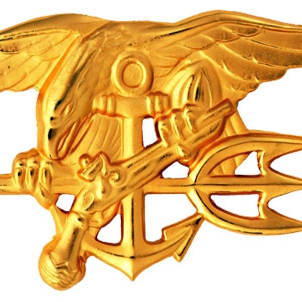 Navy SEAL insignia-159532.jpg15766990